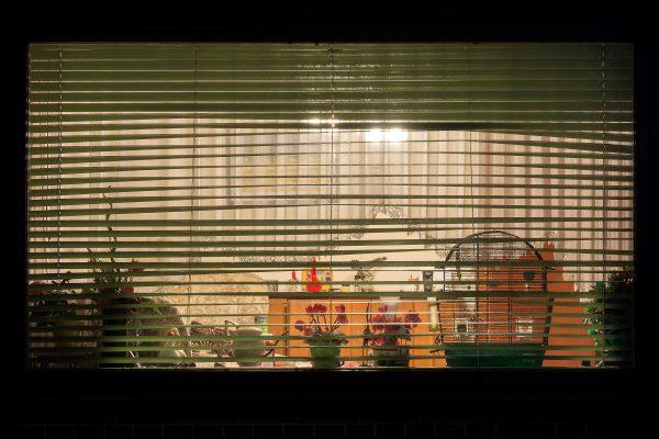 Schaufenster-164
